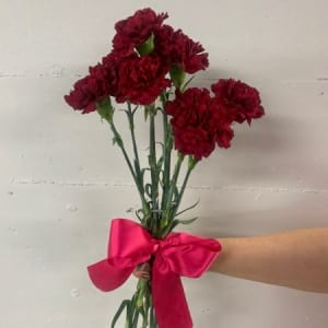 Lil Carnations